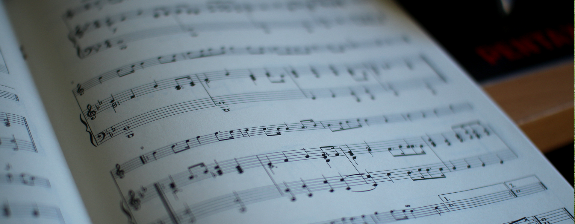 Musiker kennenlernen